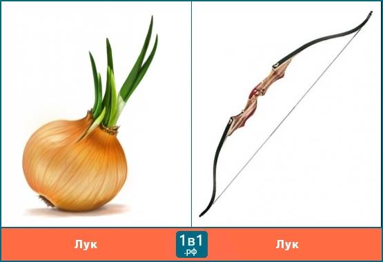 Как сделать овощи лук